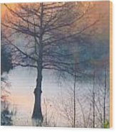 Tree Fog Sunrise Wood Print