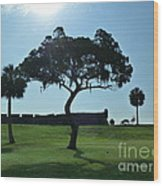 Tree Fort Wood Print