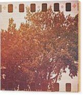 Tree Grunge Vintage Analog Film Wood Print