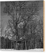 Tree House In Black And White Wood Print