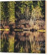 Tree Impressions Wood Print