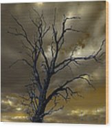 Tree In A Storm Wood Print