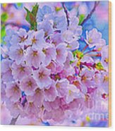 Tree In Bloom Wood Print