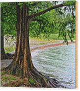 Tree In Paradise Wood Print