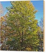 Tree In The Cemetery Wood Print