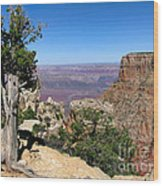 Tree In The Grand Canyon Wood Print
