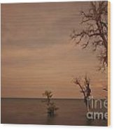 Tree In The Shoreside Wood Print
