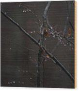 Tree Limb With Rain Drops 2 Wood Print