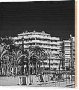 Tree Lined Seafront Promenade And Beach Salou Catalonia Spain Wood Print