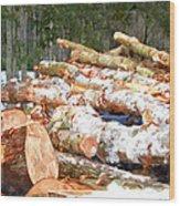 Tree Logs  Wood Print