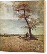 Tree Near The Road Wood Print by Pam Vick