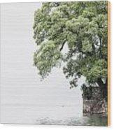 Tree Next To A Lake Wood Print