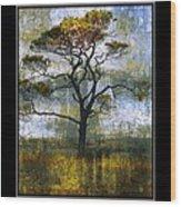 Tree Of Colours Wood Print