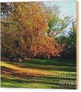 Tree Of Gold Wood Print