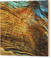 Tree Of Life Number 8 Wood Print by Peter Cutler