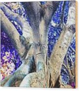 Tree Of Life Photography On Canvas Poster Beautiful Unique Fine Art Prints For Your Home Decoration Wood Print