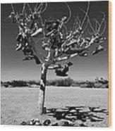 Tree Of Lost Soles 2 Wood Print