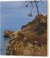 Tree On A Cliff II Wood Print