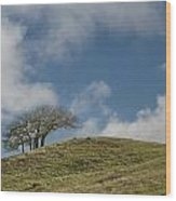 Tree On A Hill Wood Print