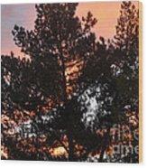 Tree On Fire Wood Print