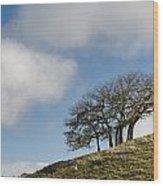 Tree On Hillside Wood Print