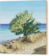 Tree On The Beach Wood Print by Veronica Minozzi