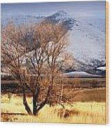 Tree On The Farm Wood Print