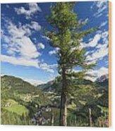 tree over Cordevole valley Wood Print