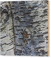 Tree People Wood Print by Heidi Smith