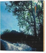 Tree Planted By Streams Of Water Wood Print