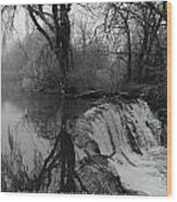 Tree Planted By The Rivers Wood Print