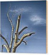 Tree Pointer Wood Print
