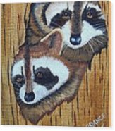 Tree Raccoons Wood Print