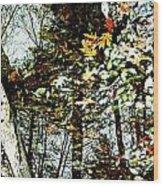 Tree Reflected In Leaves Wood Print