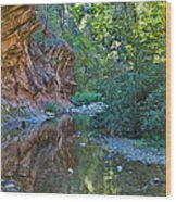 Tree Reflection Wood Print