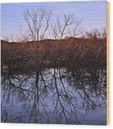 tree reflection on Wv pond Wood Print