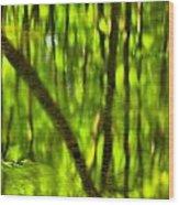 Tree Reflections Wood Print by Adam Jewell