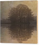 Tree Reflections II Wood Print