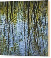 Tree Reflections On A Pond In West Michigan Wood Print