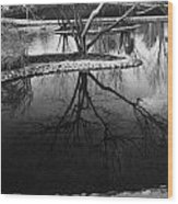 Tree Reflections On The Pond Wood Print