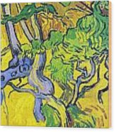 Tree Roots And Tree Trunks Wood Print by Vincent Van Gogh