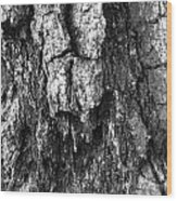 Tree Rot Wood Print