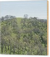 Tree Scape Wood Print
