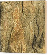 Tree Self Reflections In Bark Wood Print