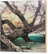 Tree Series 01 Wood Print