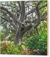 Tree Series 48 Wood Print
