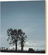 Tree Silhouette II Wood Print