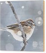 Tree Sparrow In The Snow Wood Print