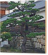 Tree Spirit Wood Print
