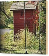 Tree Swing By The Outhouse Wood Print